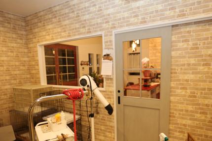 受付・待合とトリミングスペースの間仕切り壁には大きな窓を設置。