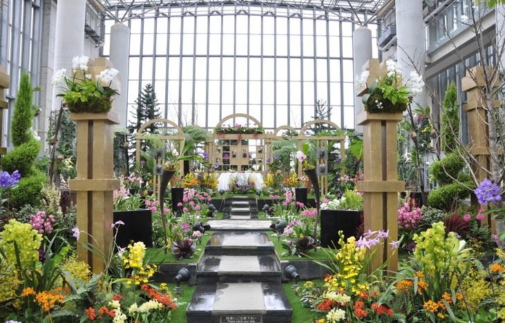 開館20周年 ラン展2020 奇跡の星の植物館 兵庫県淡路夢舞台
