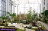 あわじガーデンルネサンス2019 花緑空間 淡路夢舞台 奇跡の星の植物館