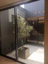 中庭の家 完成見学会 OPENHOUSE ASJ APOAスタジオ名古屋市 天白区