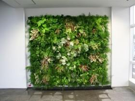 ピコガーデン、壁面緑化_Thm